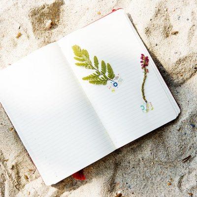 beach-2280942_640